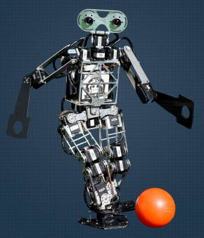I, Soccer Playing Humanoid Robot